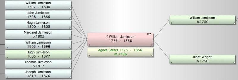 Willaim Jamieson Tree